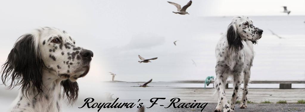 f-racing